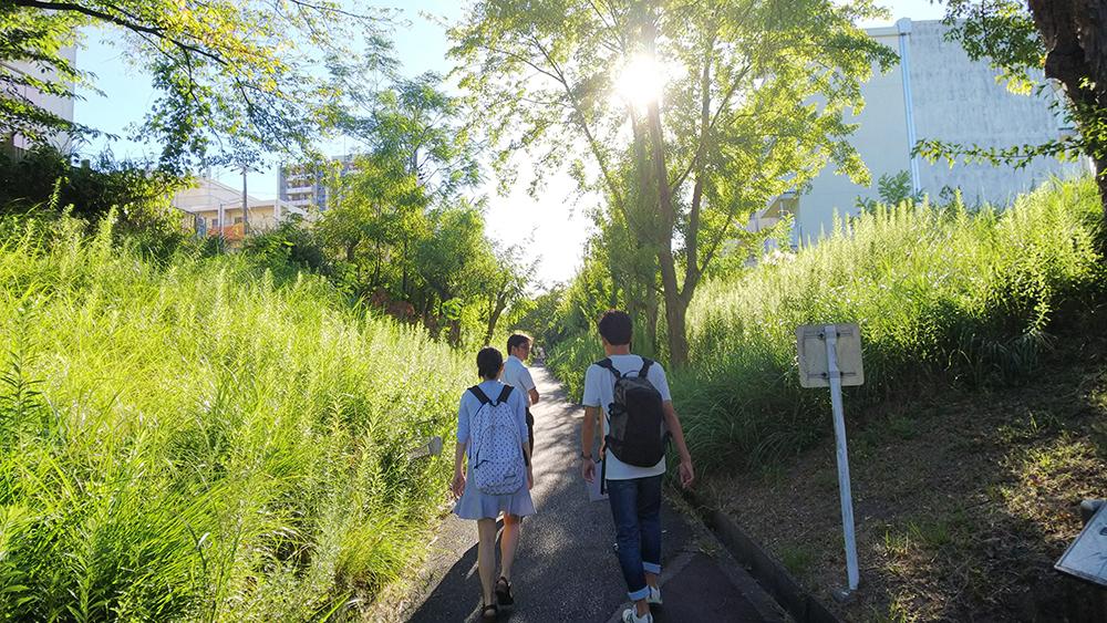 泉北ニュータウン内の緑道にてフィールドワークを行う堺市チームの学生・生徒たち